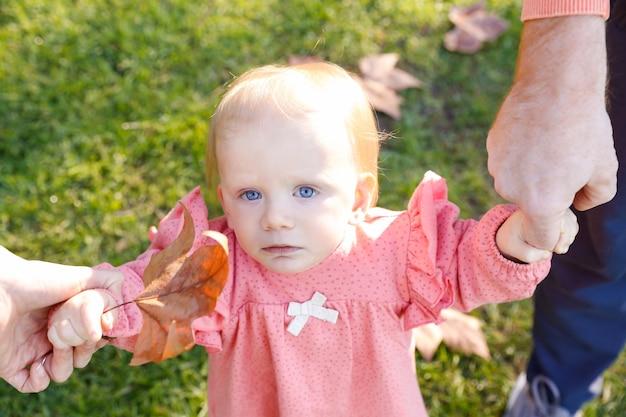 Ernstige baby die voorzijde bekijkt en de handen van de ouders en gedroogd esdoornblad houdt