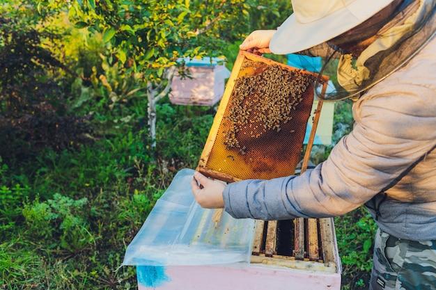 Ervaren imker grootvader leert zijn kleinzoon zorg voor bijen. bijenteelt. het concept van overdracht van ervaring.