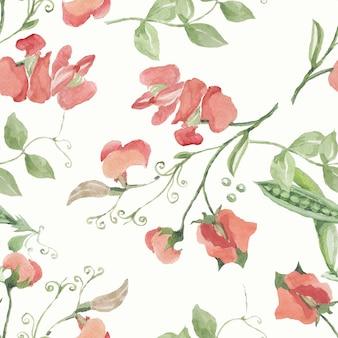 Erwten fruit bladeren bloemen twijgen. hand getekend vector aquarel illustratie.