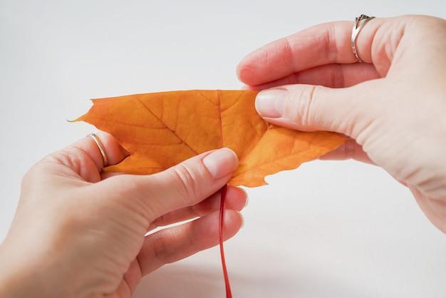 Esdoornblad dubbelgevouwen in handen diy-concept stap 3 van 12 stapsgewijze foto-instructie