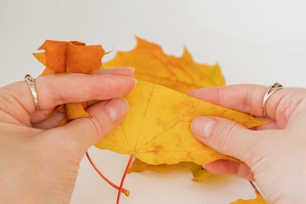 Esdoornblad in de handen gedraaid in buis en tweede dubbelgevouwen diy stap 5 van 12 stap voor stap manua
