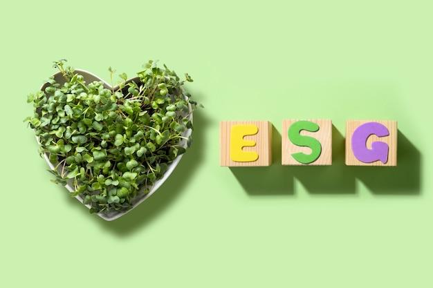 Esg milieuvriendelijk bestuur bedrijfsaudit voor milieuvriendelijkheid van bedrijven