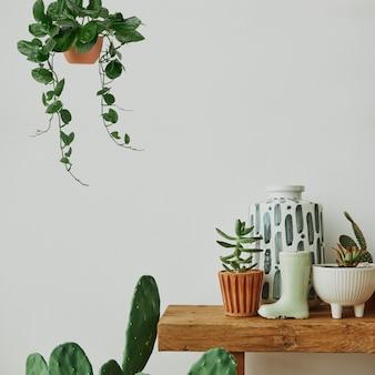Esthetisch huis met cactus en planten op een houten plank