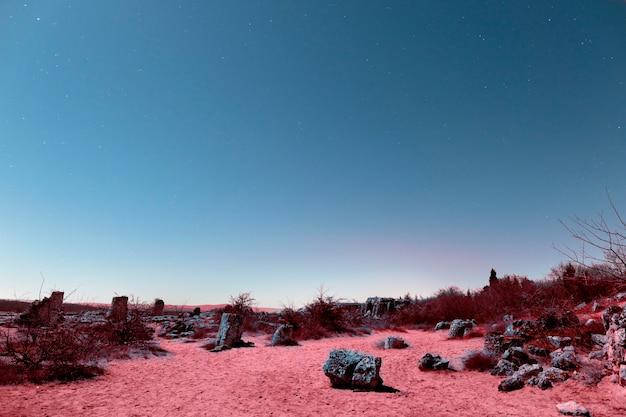 Esthetisch retro vaporwave-landschap