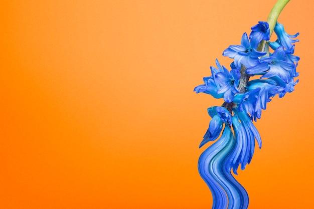 Esthetische achtergrond oranje behang, blauwe bloem trippy abstract ontwerp