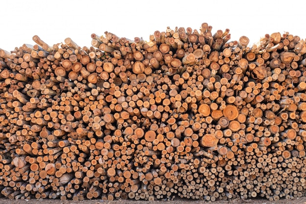 Eucalyptus houten log voor bouwgebouwen