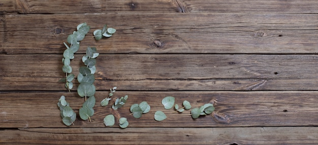 Eucalyptus op oude donkere hout banner achtergrond