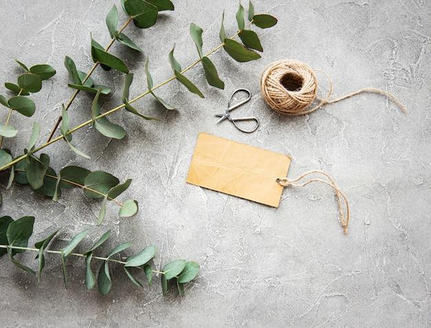 Eucalyptustakken op een concrete achtergrond