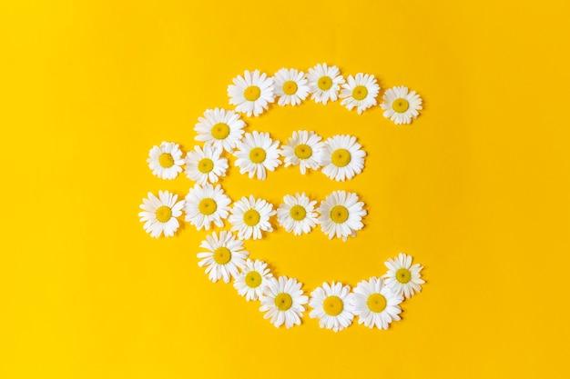 Eurosymbool gemaakt van madeliefjes op geel