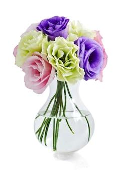 Eustoma bloemen op wit