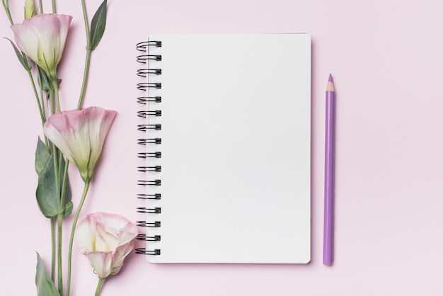 Eustomabloemen met leeg spiraalvormig notitieboekje met purper potlood tegen roze achtergrond