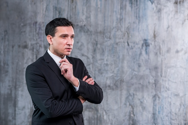 Evaluerende zakenman met gekruiste wapens weg kijkend