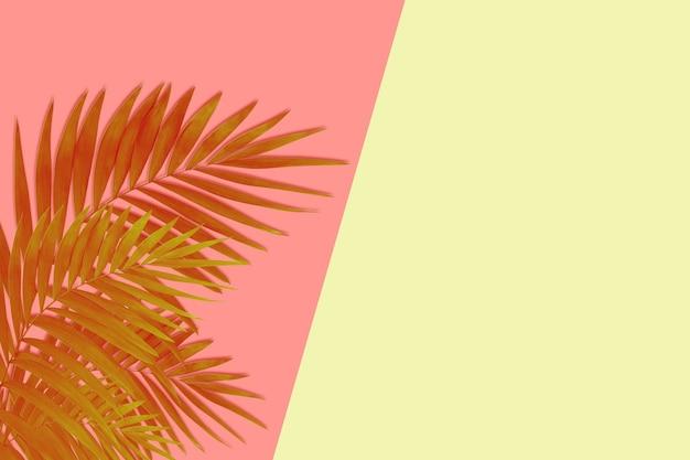 Exotische bruine tropische palmbladeren geïsoleerd op roze gele achtergrond. ontwerp voor uitnodigingskaarten, flyers. abstracte ontwerpsjablonen voor posters, covers, wallpapers met copyspace voor tekst.