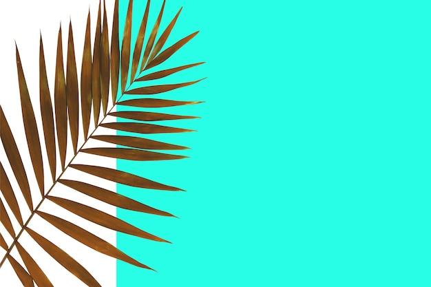 Exotische groene tropische palmbladeren geïsoleerd op een witte blauwe achtergrond. ontwerp voor uitnodigingskaarten, flyers. abstracte ontwerpsjablonen voor posters, covers, wallpapers met copyspace voor tekst.