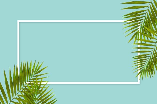 Exotische groene tropische palmbladeren geïsoleerd op gele achtergrond met wit geometrisch frame