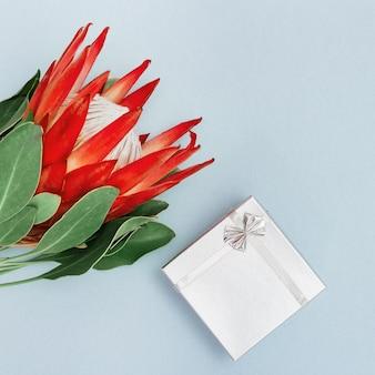 Exotische grote bloem protea met rode bloemblaadjes en zilveren geschenkdoos