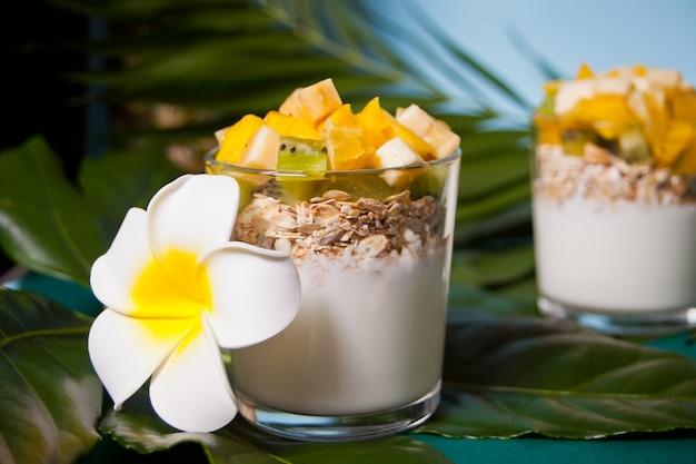 Exotische tropische fruitsalade met muesli en yoghurt in glazen op het palmblad.