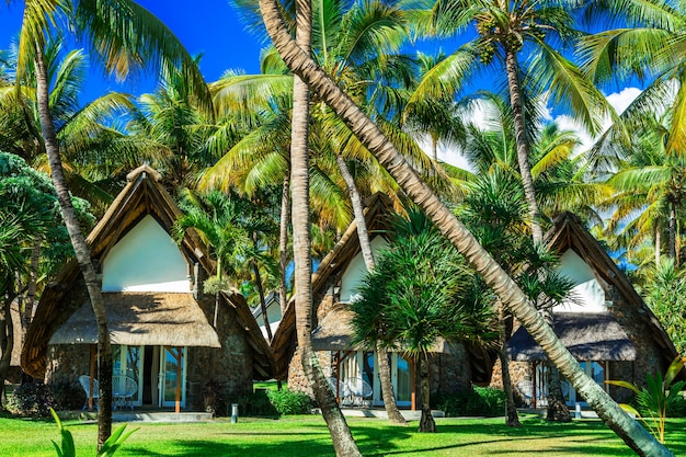 Exotische tropische vakantie, bungalows onder palmbomen. mauritius eiland