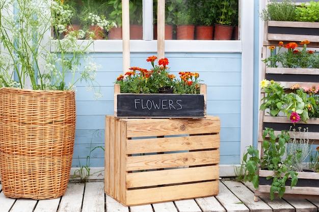 Exterieur houten veranda van huis met groene planten, kruiden en bloemen in doos bloeiende oranje tagetes