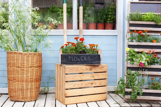 Exterieur houten veranda van huis met groene planten, kruiden en bloemen in doos zomerveranda