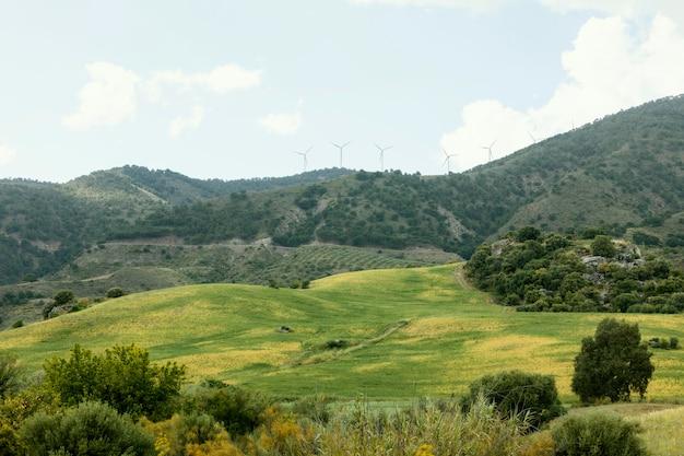 Extra lang shot vredig landschap met bomen
