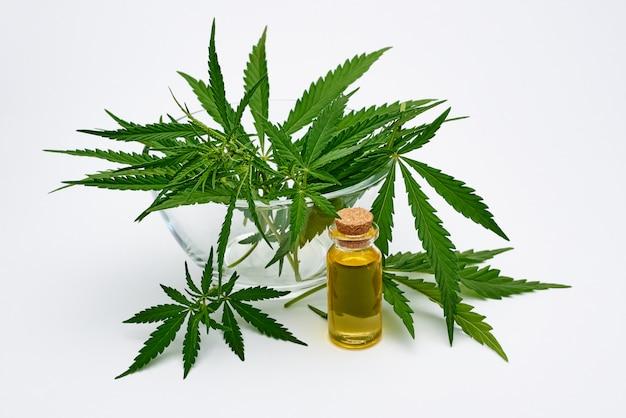 Extract van cannabisolie en verse cannabisbladeren op een witte ruimte.