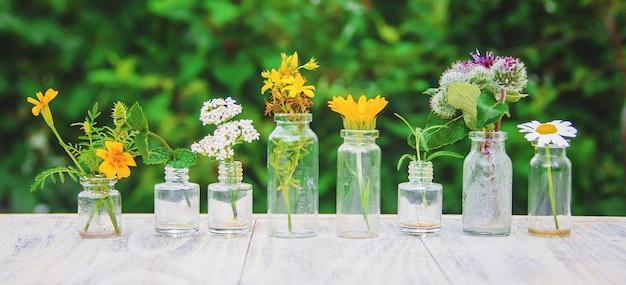 Extracten van kruiden in kleine flesjes. selectieve aandacht.