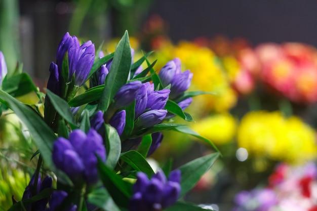 Extreem close-up van een boeket verse alstroemeriabloemen