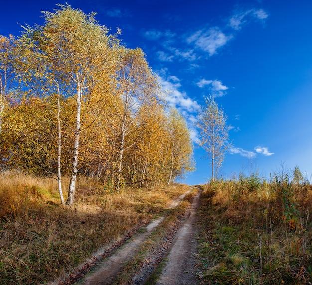 Fairy herfst landschap