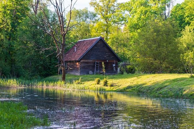 Fairy huis aan de rivier in een prachtig groen bos met zonlicht