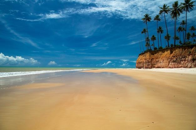 Falesias in barra do cahy beach, bahia, brazilië. februari 2017.