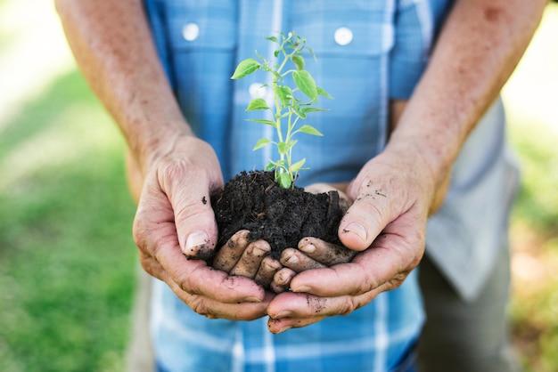 Familie die een nieuwe boom plant voor de toekomst