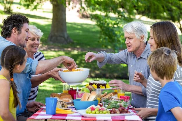 Familie die een picknick heeft
