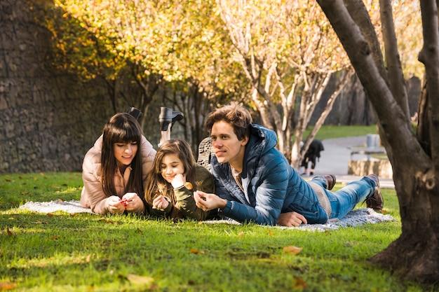 Familie die op deken in park ligt