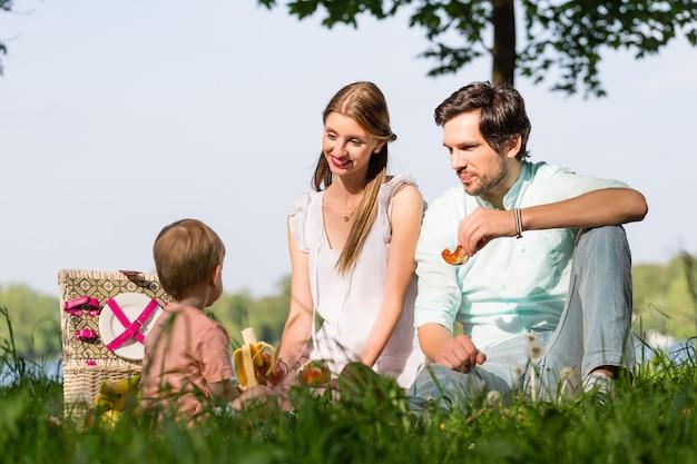 Familie die picknick heeft bij meerzitting op weide