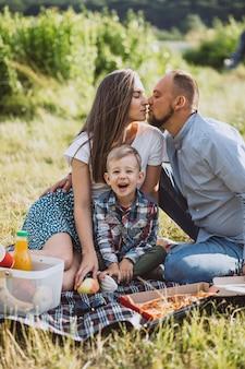 Familie die picknick heeft en pizza in park eet