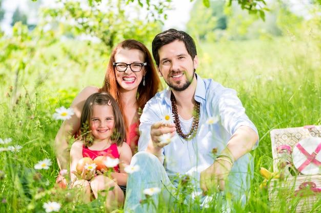 Familie die picknick op weide met gezond fruit heeft