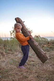 Familie lokaal uitje. kid verzamelen van houten logboeken voor vreugdevuur op de camping, actieve levensstijl