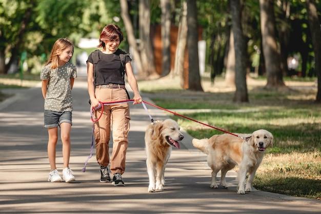 Familie wandelen met golden retriever honden in het park. moeder, dochter en twee hondjes buiten in de zomer