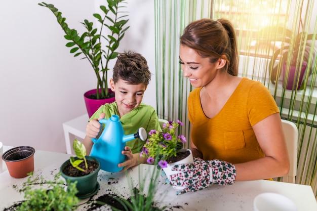 Familiemoeder en zoon kweken bloemen, verplanten zaailingen in de tuinmannen.