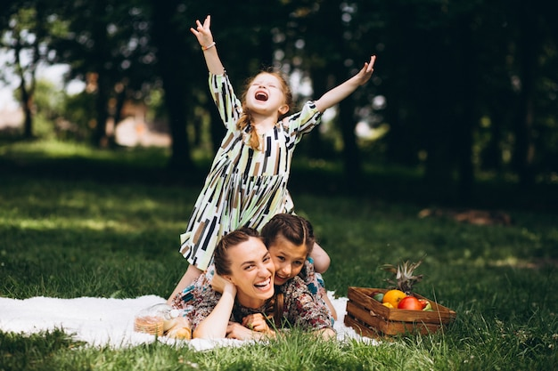 Familiepicknick in het park