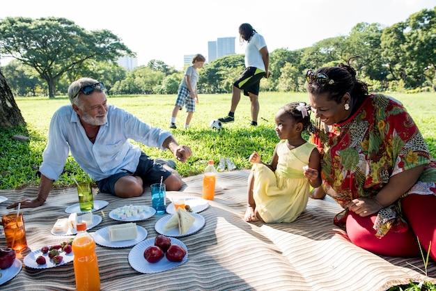 Familiepicknick in openlucht saamhorigheidontspanning concept