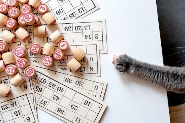 Family lotto bordspel. kaarten en vaten met cijfers.