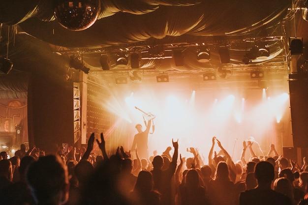 Fans juichen tijdens een concert
