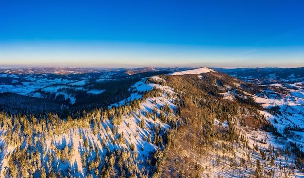 Fantastisch besneeuwd panorama van sparren die in de winter op de berghellingen groeien bij bewolkt mistig weer. wintersport- en skigebiedconcept