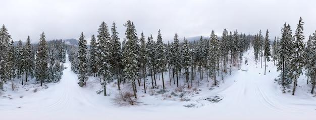 Fantastisch besneeuwd panorama van sparren die op de berghellingen groeien