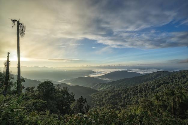 Fantastisch de berglandschap van de ochtendzonsopgang, landschap van hoge groene bergen, blauwe hemelwi