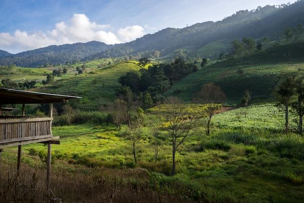 Fantastisch natuurlandschap en de schoonheid van de natuur, ver weg in het centrum.