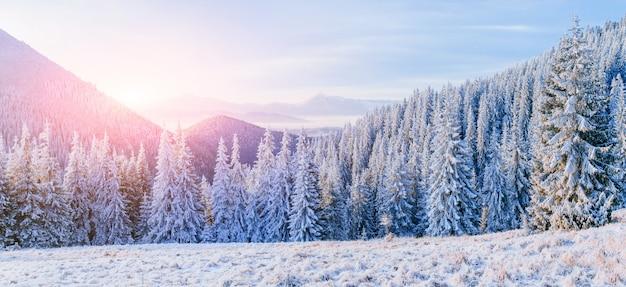 Fantastisch winterlandschap in de bergen. magische zonsondergang in een