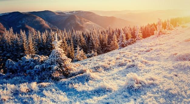 Fantastisch winterlandschap in de bergen.
